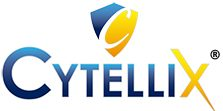 Cytellix Cyber Blog for SMBs
